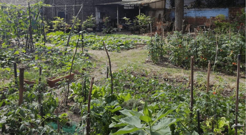 Jardin du Curé